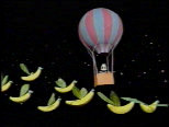 Banana Birds take flight